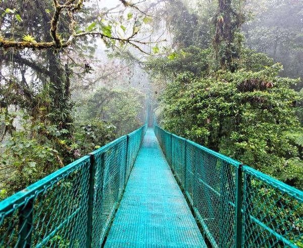 Taalreizen/Spaans_Costa Rica_taalcursus_Spaans_thuisstudies_vergelijken